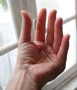 la flexion des articulations métacarpo-phalangiennes entraîne le rapprochement des doigts longs