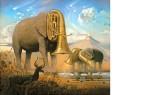 Eléphants par Dali